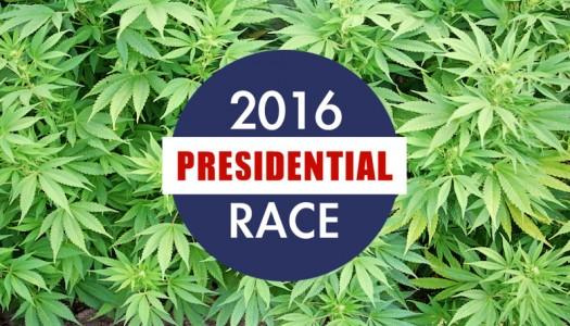 Marijuana's Impact on the 2016 Presidential Race