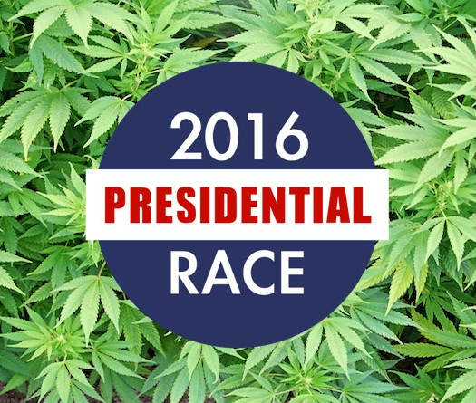 2016-Presidential-Candidates-on-Cannabis