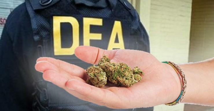 dea-chief-retreats-on-marijuana-war