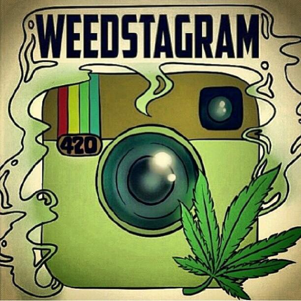 kushcoast-instagram