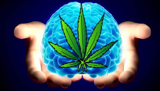 Prolonged Marijuana Use Could Affect Verbal Memory