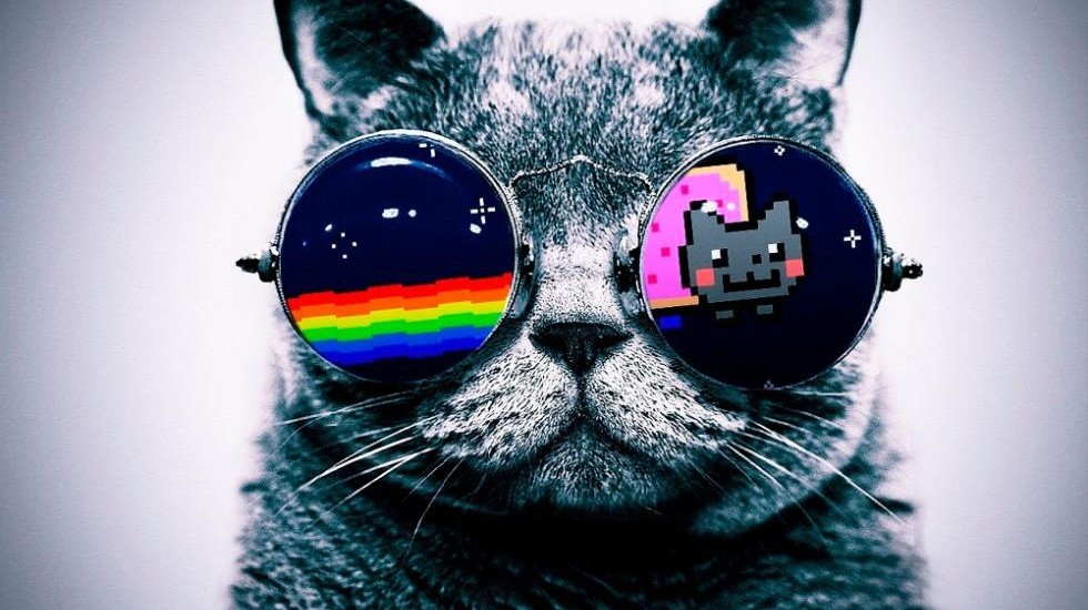 Cool-Macro-font-b-Nyan-b-font-font-b-Cat-b-font-Glasses-Silk-Cloth-Poster