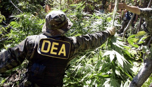DEA May Soon Reschedule Cannabis
